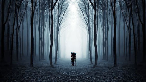 Walking Through a Dark Woods.jpg