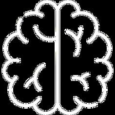 brain (3)j.png