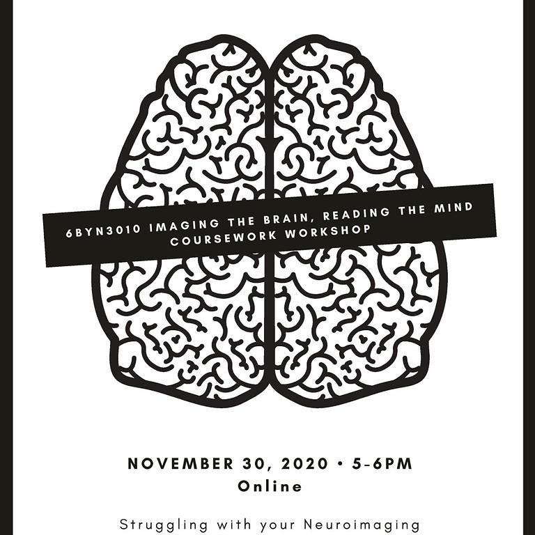 Imaging the brain- Coursework Workshop