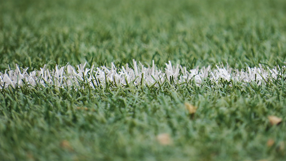 field-field-line-grass-54567.jpg