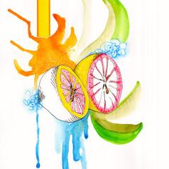 Chuck Carbia sketchbook lemons 4.jpeg