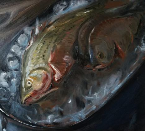 Fresh Fish Still Life