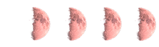 Lunar Phases pink FIRST QUARTER MOON.png