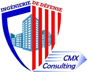 Logo CMX Consulting.jpg