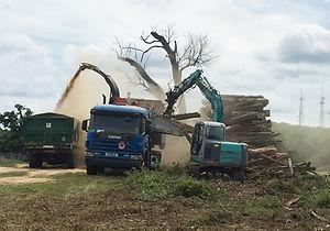 Biomass Chipping.jpg