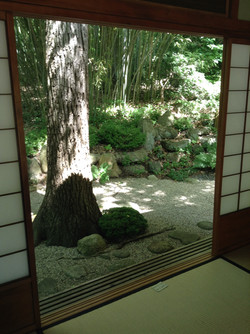 A View from the Tea House