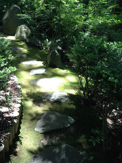 Moss Path