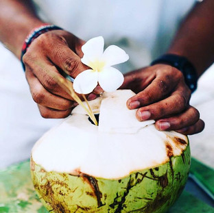 Fresh, ice cold coconuts daily. Island l