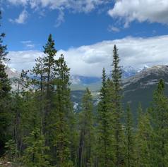 Sulpher Mountain, intense climb but so beautiful
