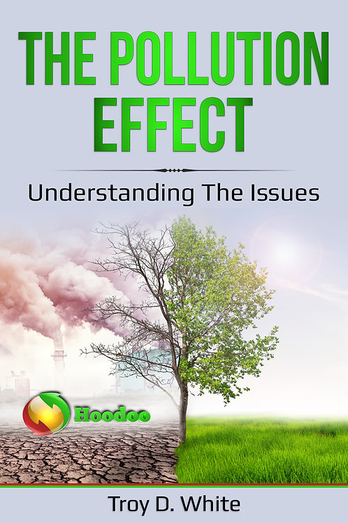 The Pollution Effect eBook