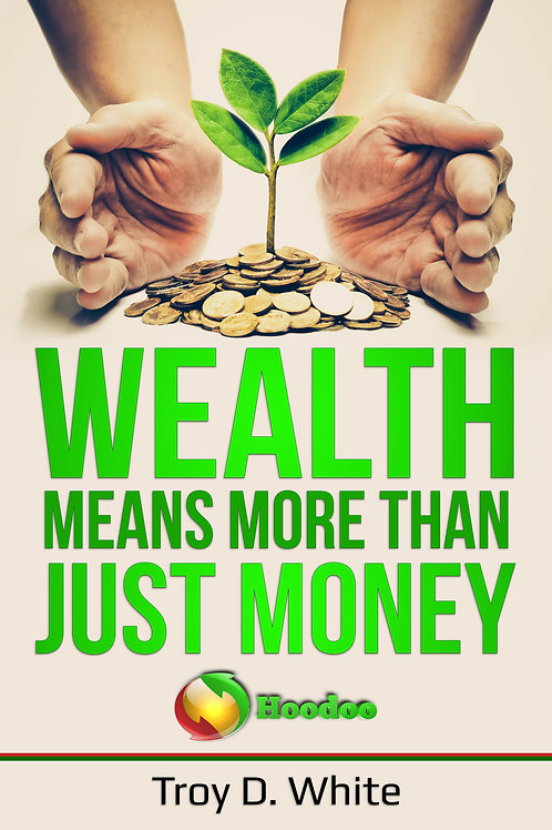 Wealth Means More Than Just Money eBook