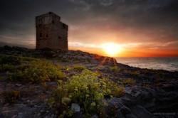 Torre palane