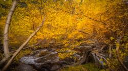 Rock Creek Fall Color3