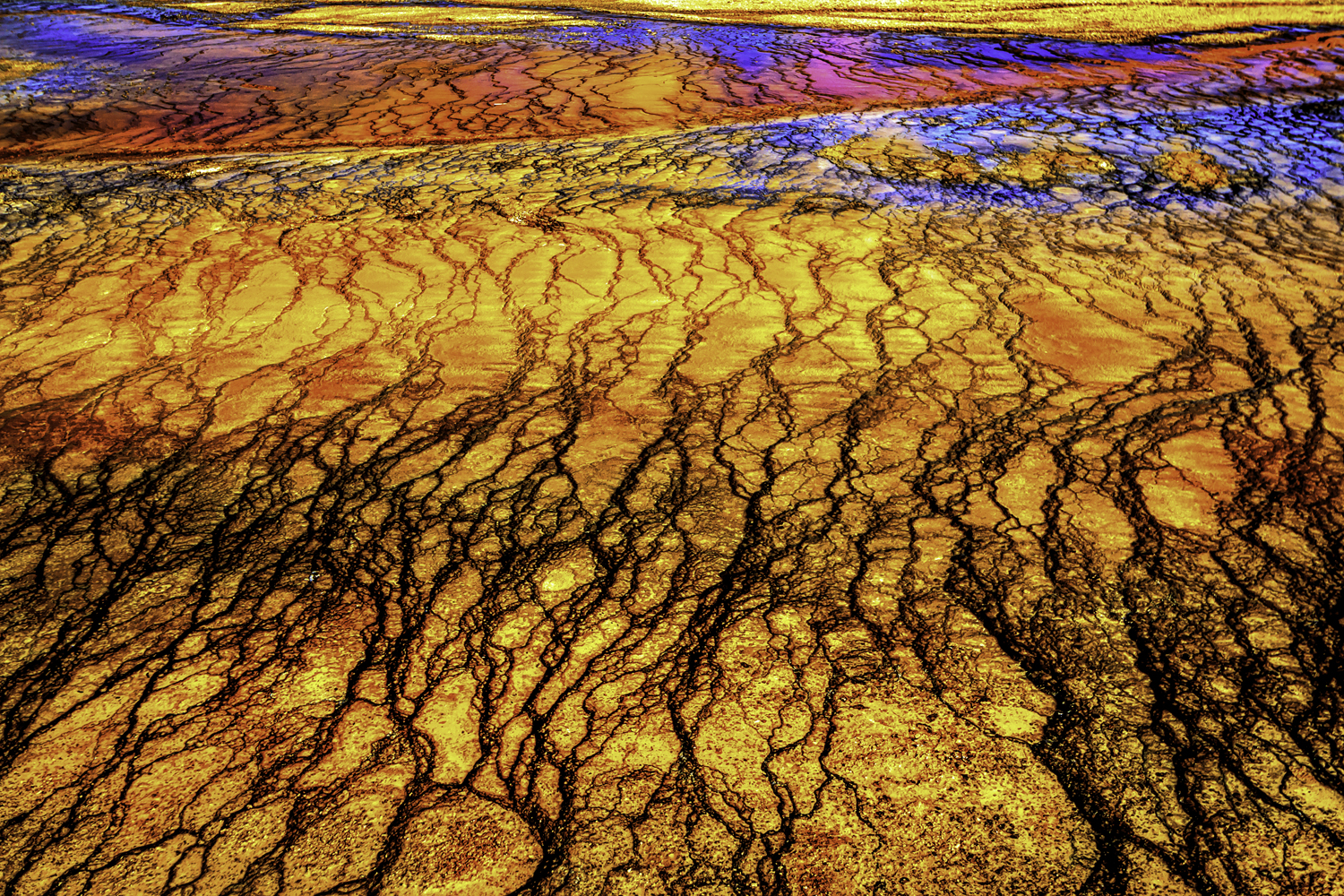 Yellowstone National Park (abstract)