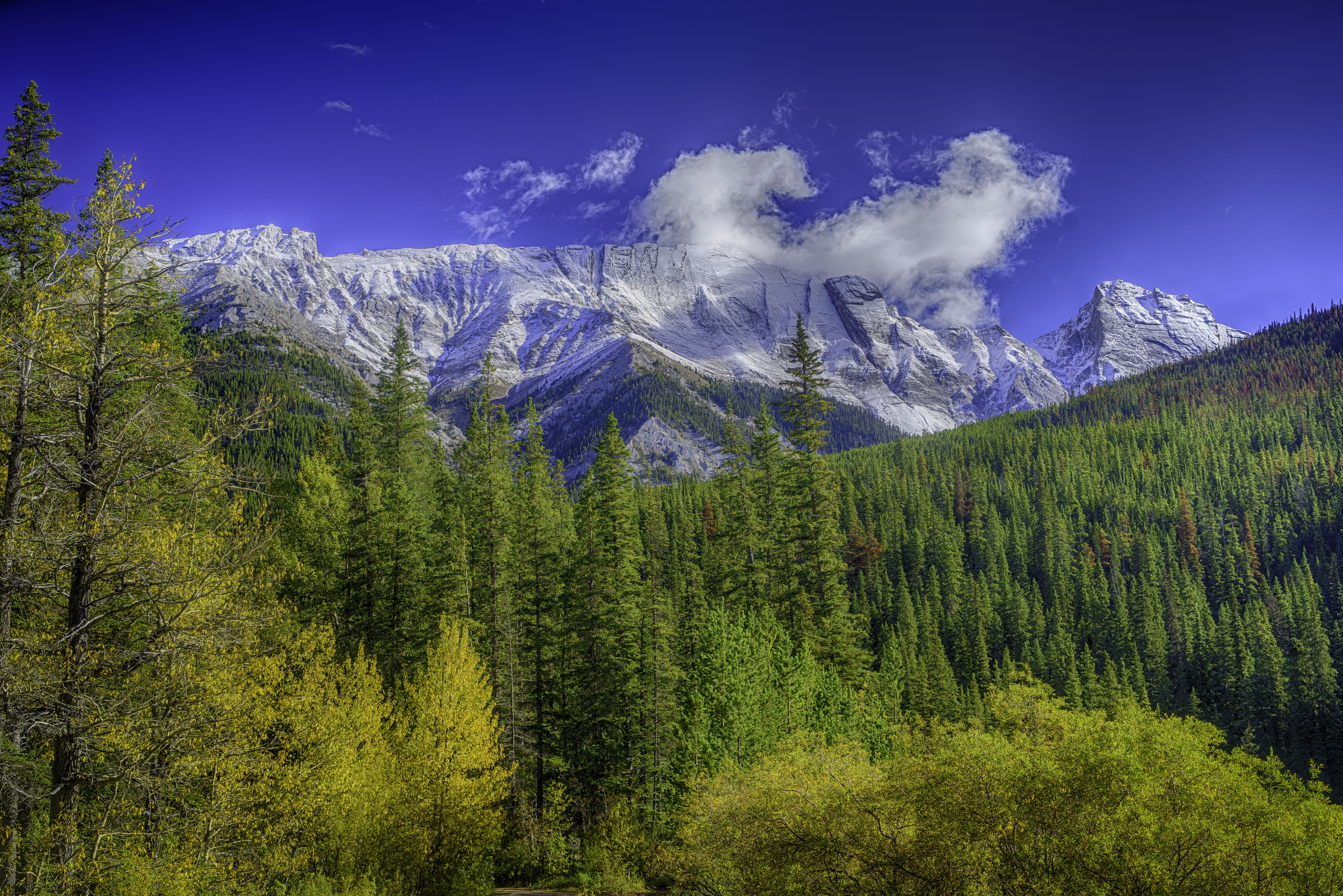 Queen Elizabeth Range, Canada