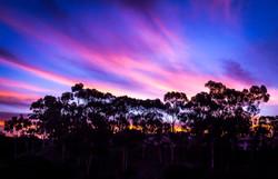 Sunrise at San Elijo Lagoon