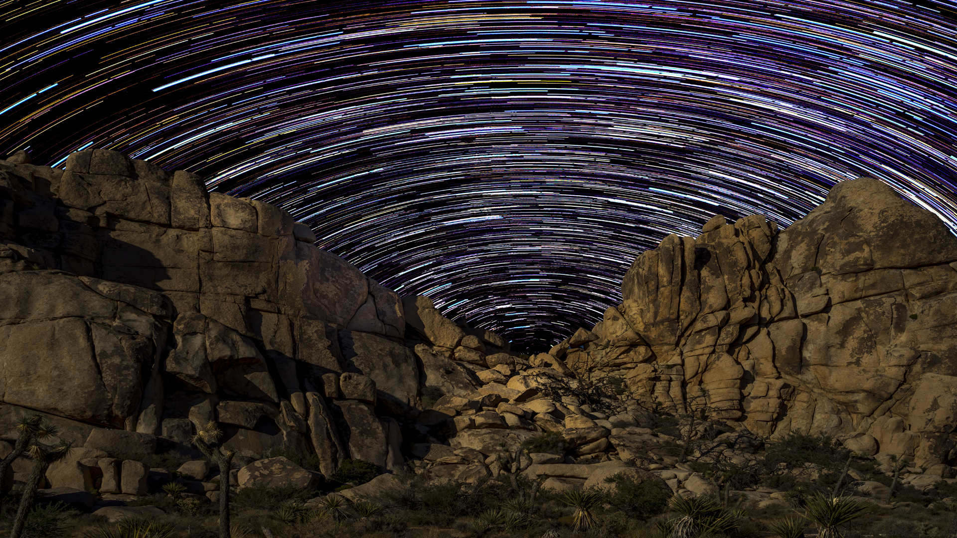 Star Trails Joshua Tree5