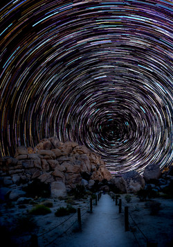 Star Trails Joshua Tree4