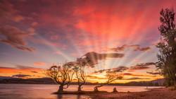 Wanaka Sunrise11