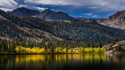 June Lake Fall Color1