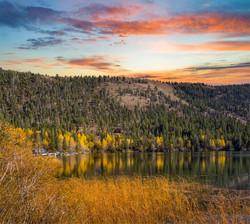 June Lake Fall Color6