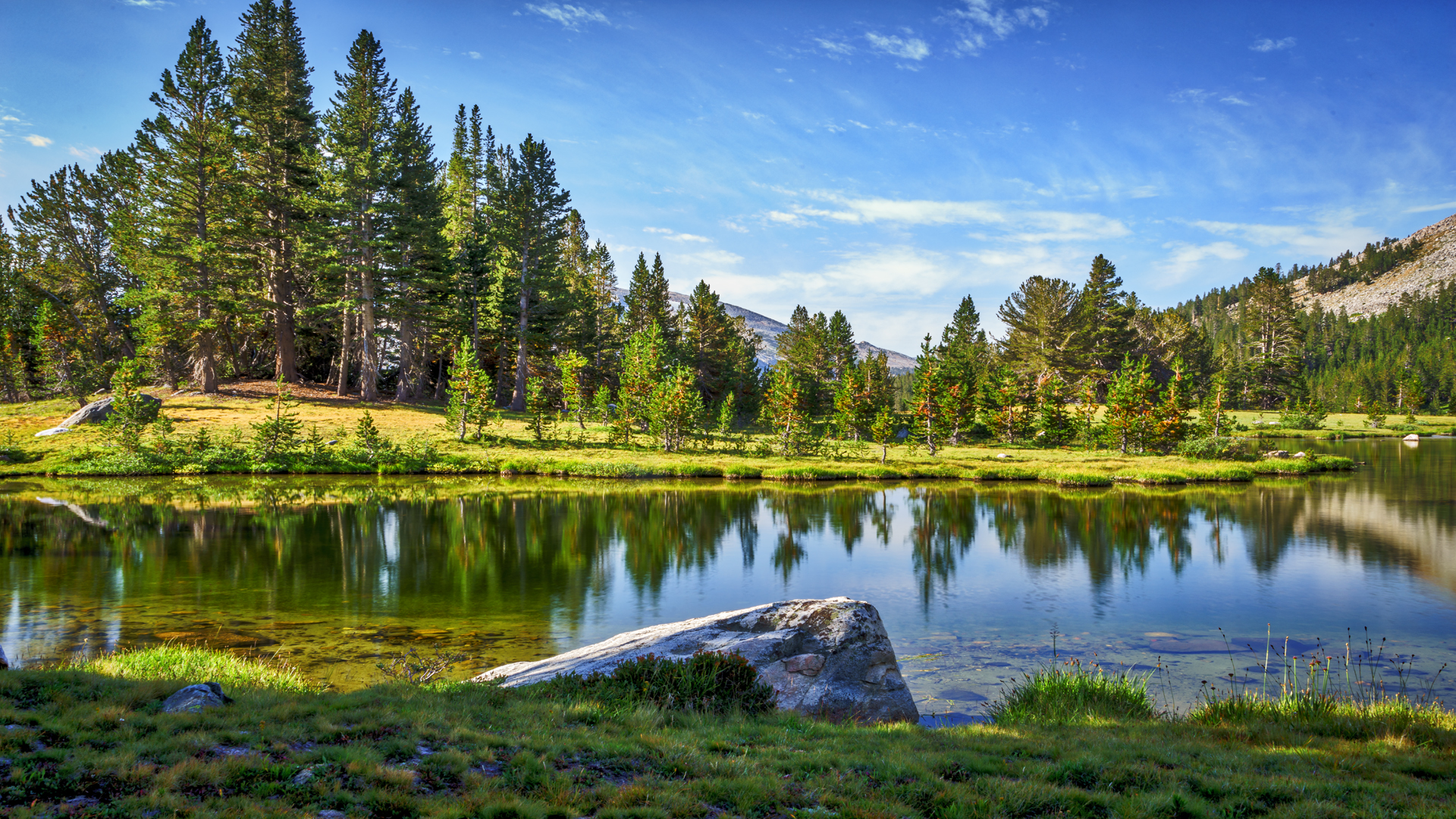 Tuolumne Meadows1