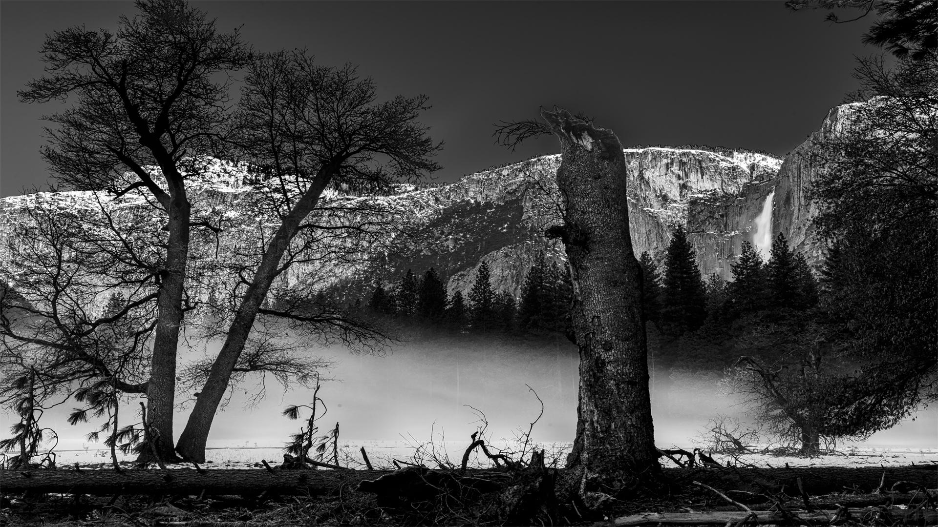 Valley Mist BW1