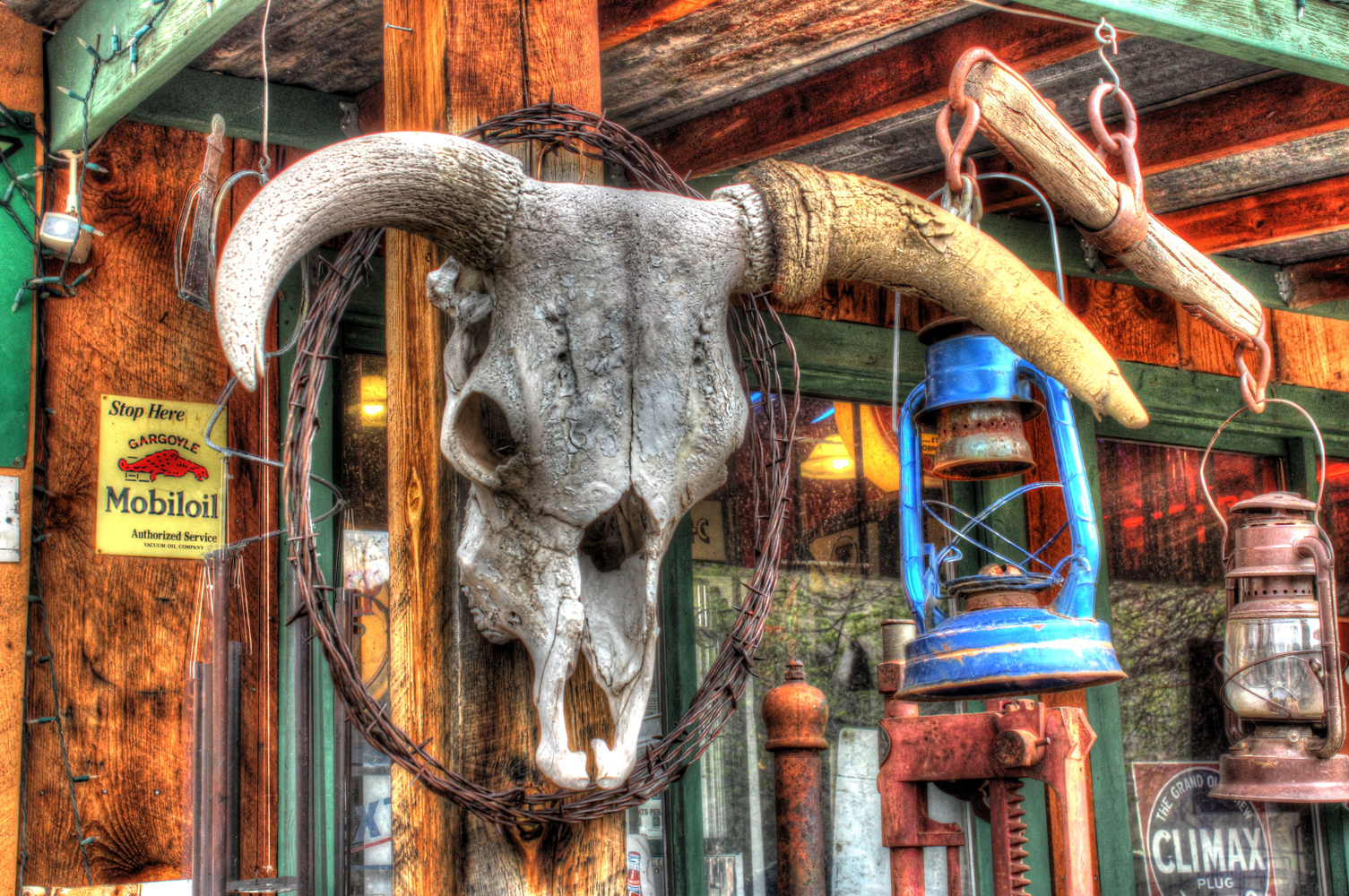 Photo of Steer Skull, Santa Fe NM