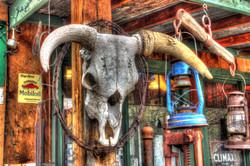 Photo of Steer Skull, Santa Fe NM