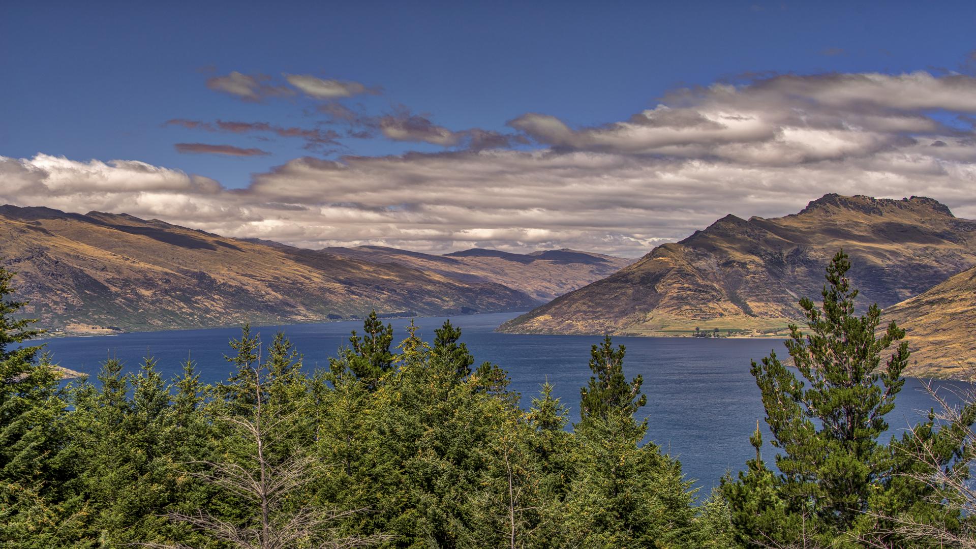 Queenstown Hill-Lake Wakatipu6