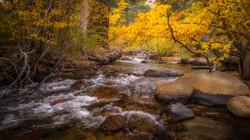 Rock Creek Fall Color7