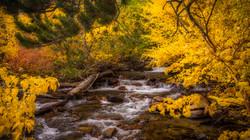 Rock Creek Fall Color15