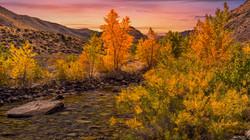 Walker Creek Fall Color Sunset1