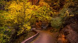 Valley Color3