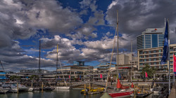 Auckland 11