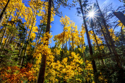 Autumn in Taos2