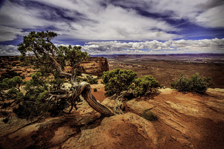 Canyonlands, Dan Grider Photo