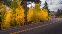 Rock Creek Fall Color10
