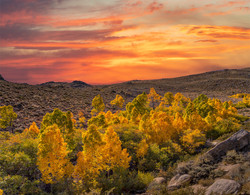 Lee Vining Fall Color Sunset1