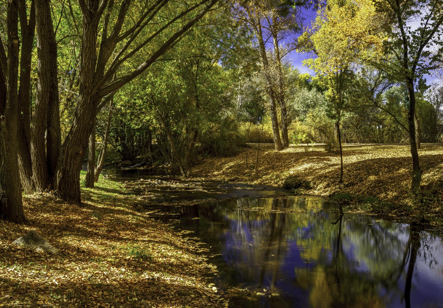 Old Spanish Martinez Rancho