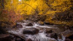 Rock Creek Fall Color1