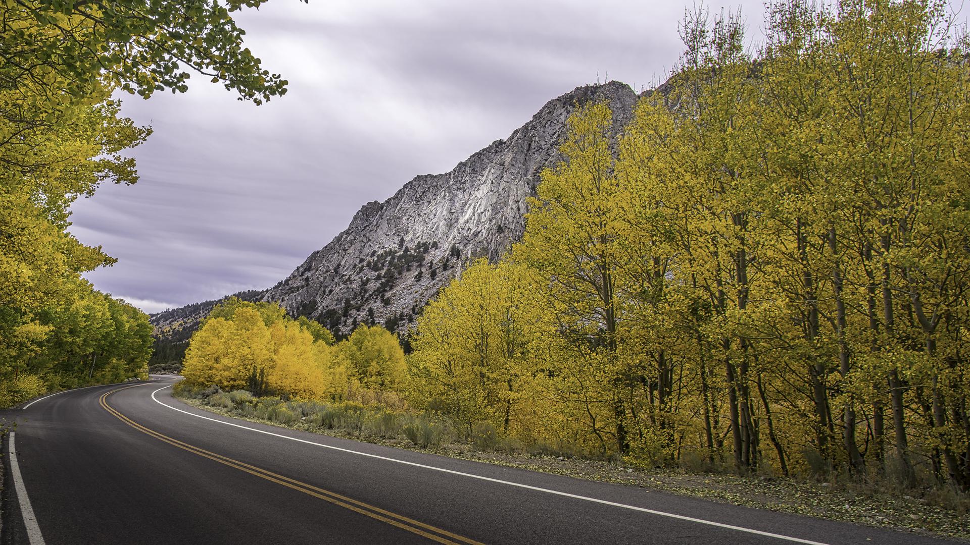Rock Creek Fall Color23