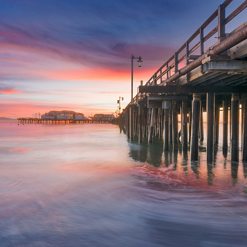 Wilson - Santa Barbara