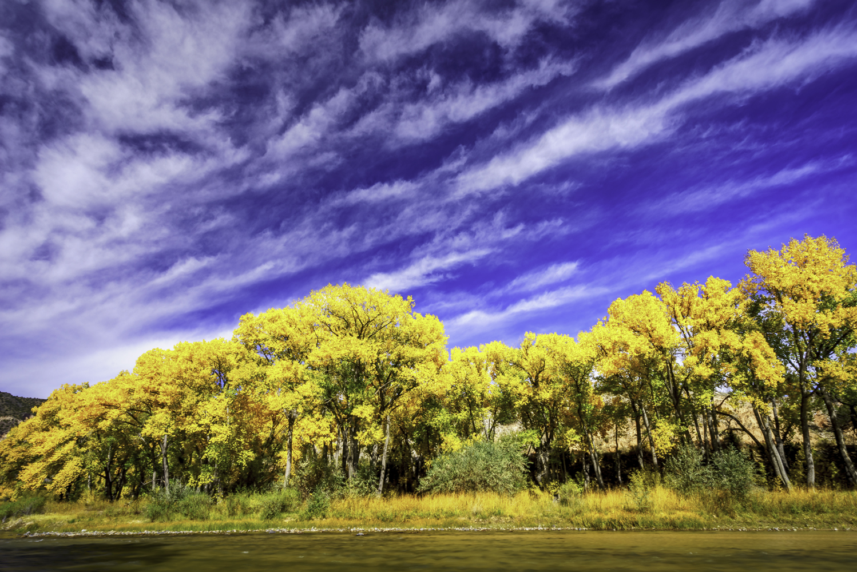Fall Color on the Rio Grande