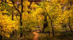 Valley Color2