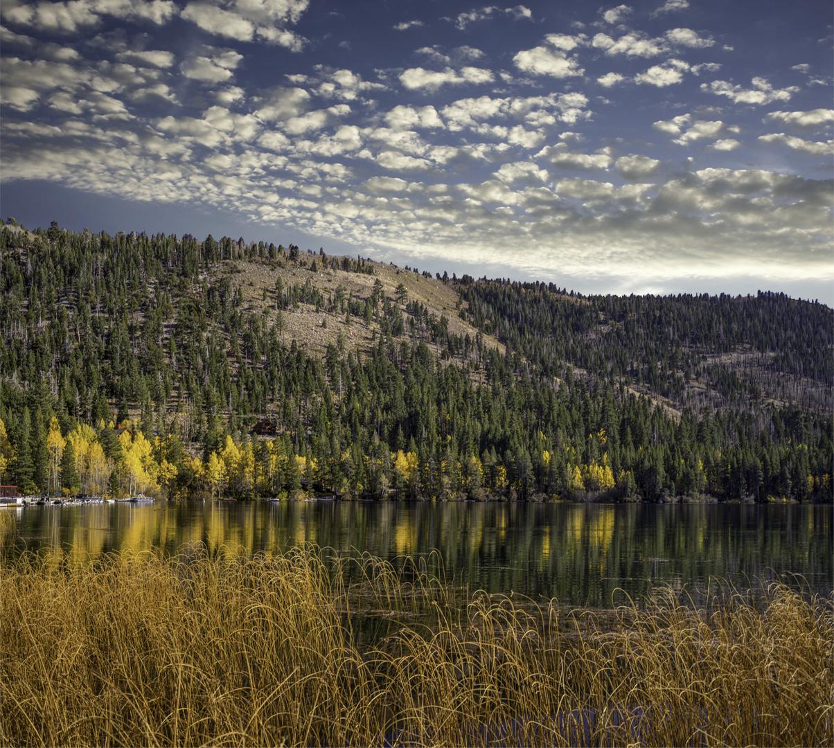 June Lake Fall Color5