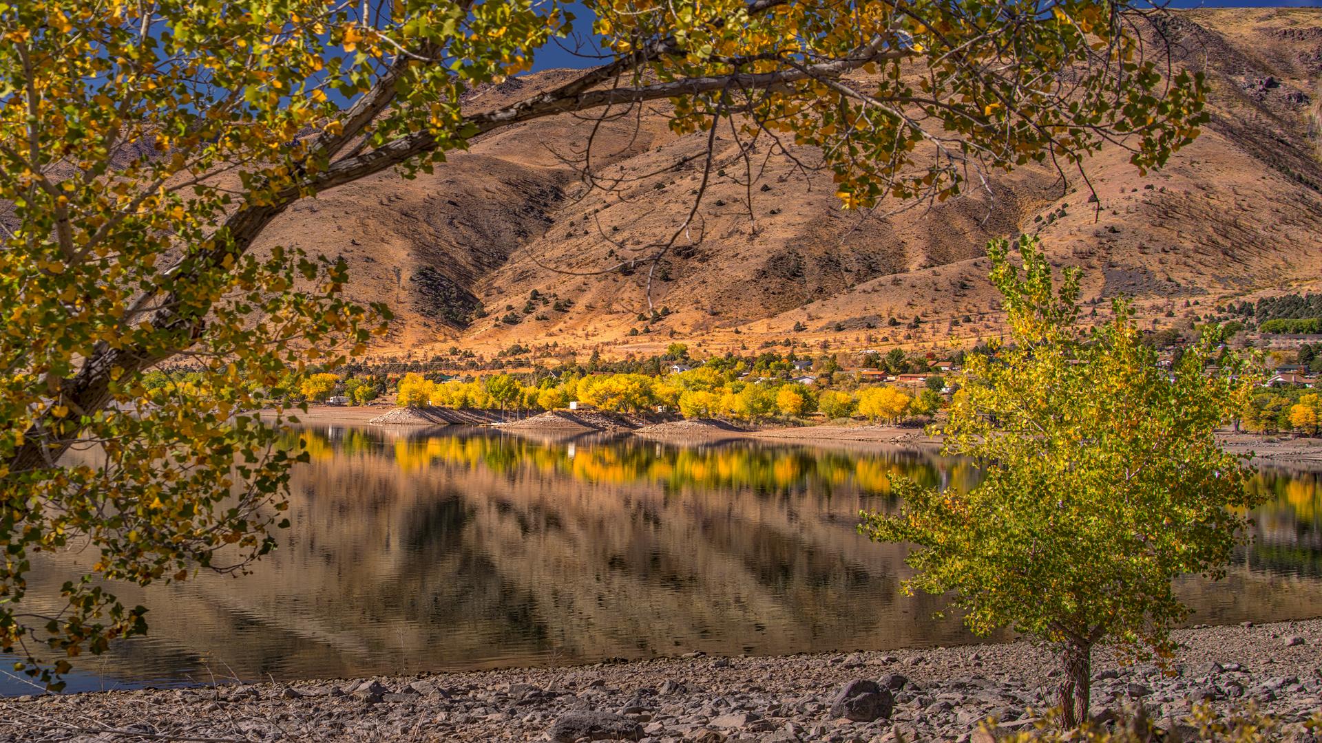 Topaz Lake Fall Color4