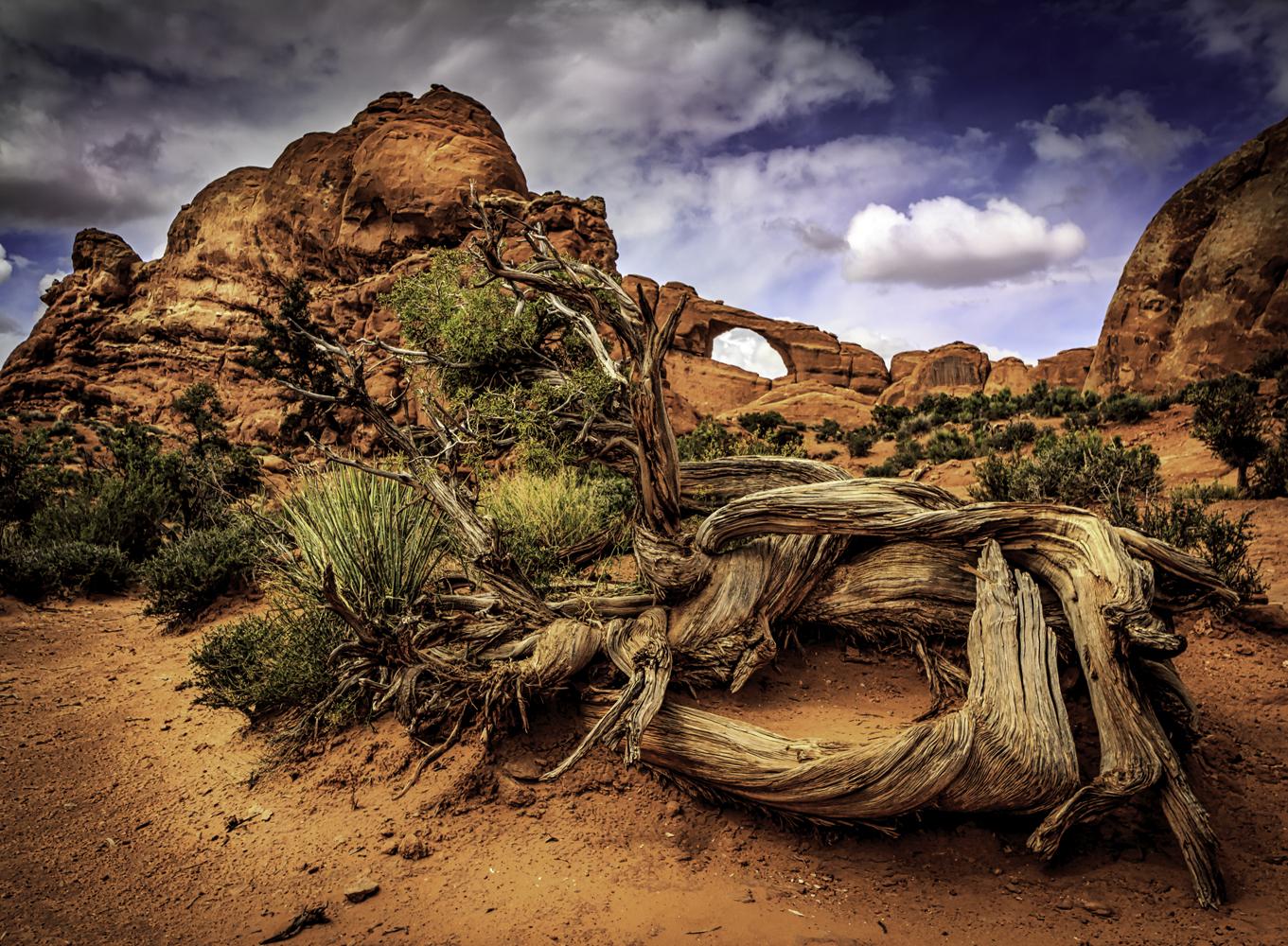 Skyway Arch, Dan Grider Photo