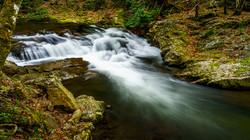 Gatlinburg-Abrams Creek7a
