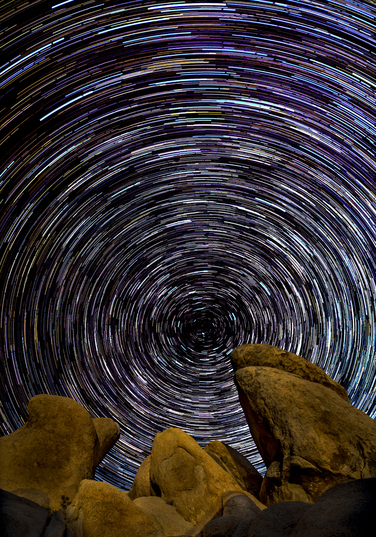 Star Trails Joshua Tree3
